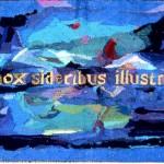 Nox Sideribus Illustris